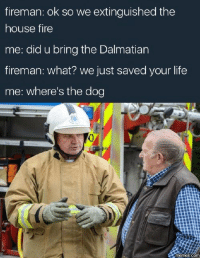 dalmatian: fireman: ok so we extinguished the  house fire  me: did u bring the Dalmatian  fireman: what? we just saved your life  me: where's the dog  memes.com