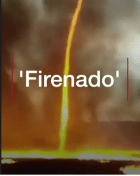 "Fire, Memes, and California: Firenado What do you get when winds mix with flames and smoke? A ""firenado"". Tap the link in our bio ⬆️ to read more about the rare force of nature which has also been seen in the wildfires in California. 🔥🌪 firenado fire tornado firefighters bbcnews"