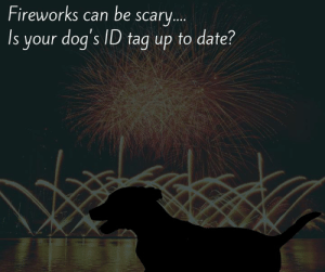 Beautiful, Dogs, and Memes: Fireworks can be scary...  Is your dog's ID tag up to date? It's almost July and that means bright and booming patriotic displays of fireworks will soon begin to light to the skies. While they are certainly beautiful, did you know that 1 in 5 pets will go missing after being frightened by loud noises like fireworks? Take some time this week to make sure your pet's microchip and ID tag are up to date with your current information. It could make all the difference if your pet becomes lost. Need a new ID tag? Stop in to Tails Humane Society and get a custom, up to date ID tag for just $10!   For hours, location and other shelter information, please visit www.TailsHumaneSociety.org