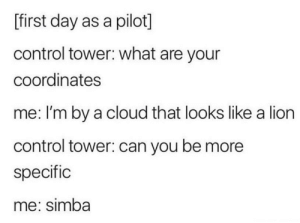 Made me smile :): [first day as a pilot]  control tower: what are your  coordinates  me: I'm by a cloud that looks like a lion  control tower: can you be more  specific  me: simba Made me smile :)