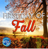 Happy First Day of Fall! 🍂🍃🍁: FIRST DAY F  THE  IEW  20 Happy First Day of Fall! 🍂🍃🍁