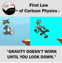 "Physics: First Law  of Cartoon Physics:  ""GRAVITY DOESN'T WORK  UNTIL YOU LOOK DOWN."""