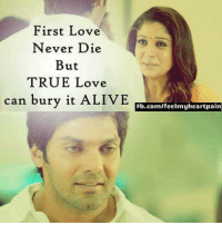 Alive, Memes, and Pain: First Love  Never Die  But  TRUE Love  can bury it ALIVE  Fb.com/feelmy heart pain