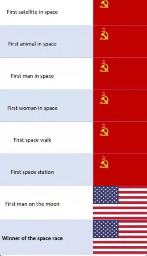 Animal, Moon, and Space: First satellite in space  First animal in space  First man in space  First woman in space  First space walk  First space station  First man on the moon  Winner of the space race Excuse me what the f☭ck