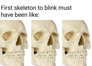 My efforts are low.: First skeleton to blink must  have been like: My efforts are low.