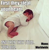 Memes, 🤖, and Jaclyn: First they steal  your heart  AND THEN THEY STEAL  Mums  YOUR BED  Worldwide Truth!!!  *jaclyn*