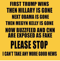 Megyn Kelly, Memes, and 🤖: FIRST TRUMP WINS  THEN HILLARY IS GONE  NEXT OBAMA IS GONE  THEN MEGYN KELLY IS GONE  NOW BUZZ FEED AND CNN  ARE EXPOSED AS FAKE  PLEASE STOP  I CAN'T TAKE ANY MORE GOOD NEWS -Jacob