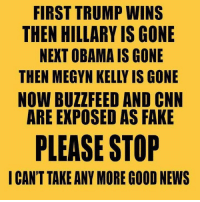 Megyn Kelly, Memes, and 🤖: FIRST TRUMP WINS  THEN HILLARY IS GONE  NEXT OBAMA IS GONE  THEN MEGYN KELLY IS GONE  NOW BUZZ FEED AND CNN  ARE EXPOSED AS FAKE  PLEASE STOP  I CAN'T TAKE ANY MORE GOOD NEWS Ron