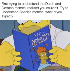 Mefirl: First trying to understand the Dutch and  German memes, realised you couldn't. Try to  understand Spanish memes, what'd you  expect?  AM  DISABLED? Mefirl