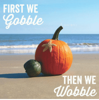 Only a few days stand between you and that glorious turkey nap.: FIRST WE  THEN WE  Wobble Only a few days stand between you and that glorious turkey nap.