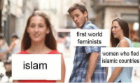 Memes, Women, and World: first world  feminists  women who fled  islamic countries  slam (GC)