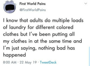 Bad, Clothes, and Laundry: First World Pains  @FirstWorldPains  I know that adults do multiple loads  of laundry for different colored  clothes but l've been puttina all  my clothes in at the same time and  Im just saying, nothing bad has  happened  8:00 AM 22 May 19 TweetDeck Can confirm this
