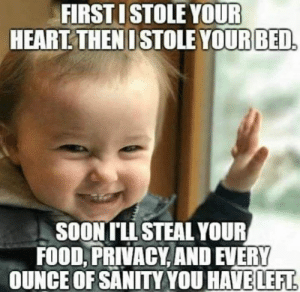 Dank, Food, and Heart: FIRSTISTOLE YOUR  HEART. THENI STOLE YOURBED  SOONTLL STEAL YOUR  FOOD, PRIVACY AND EVERY  OUNCE OF SANITY YOU HAVELEFT All apart of the plan.