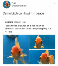 Bad, Bitch, and Saw: Fish  @petsmartfish  Damn bitch can l swim in peace  layal eid @layal_eid  i took these pictures of a fish i saw at  petsmart today and i can't stop laughing it's  so ugly if you're not following @ship i feel bad for you sweetie