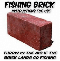 Logic, Meme, and Fishing: FISHING BRICK  INSTRUCTIONS FOR USE  THROW IN THE AIR IF THE  BRICK LANDS GO FISHING I can't dispute the logic :) #meme #fishingmeme #fishing