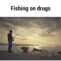 Taking lsd before a fishing trip is always a bad idea: Fishing on drugs Taking lsd before a fishing trip is always a bad idea