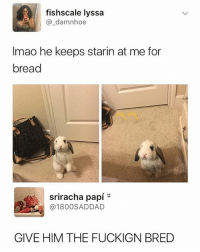 Sriracha, Dank Memes, and Bread: fishscale lyssa  @_damnhoe  Imao he keeps starin at me for  bread  sriracha papí  @1800SADDAD  GIVE HIM THE FUCKIGN BRED give him the bread h0e