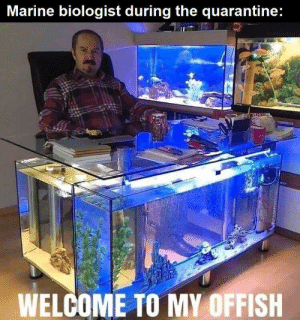 Fishy business.: Fishy business.
