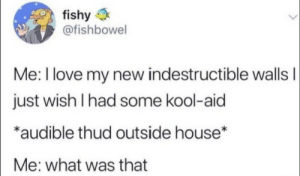 Kool Aid, Love, and House: fishy  @fishbowel  Me: I love my new indestructible wallsI  just wish I had some kool-aid  *audible thud outside house*  Me: what was that