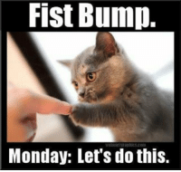 Fist Bump.  Monday: Let's do this.