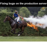 Server, Bugs, and Fixing: Fixing bugs on the production server