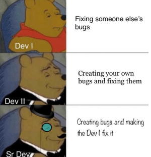 My software development career summarized: Fixing someone else's  bugs  Dev l  Creating your own  bugs and fixing them  Dev 11 7  Creating buge and making  the Dev I fix it  Sr Dev My software development career summarized