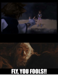 Many claim that Gandalf was trying to hint to the Fellowship to use the eagles with this phrase. We here, in Kingdom Hearts Memes, have found to whom was Gandalf talking to at that moment. ~Xigbar: FL. YOU FOOLS!! Many claim that Gandalf was trying to hint to the Fellowship to use the eagles with this phrase. We here, in Kingdom Hearts Memes, have found to whom was Gandalf talking to at that moment. ~Xigbar
