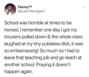 Dank, Dicks, and Memes: FlannyTM  @LiamFlannigan1  School was horrible at times to be  honest, I remember one day I got my  trousers pulled down & the whole class  laughed at my tiny pubeless dick, it was  so embarrassing! So much so l had to  leave that teaching job and go teach at  another school. Praying it doesn't  happen again. Kids are dicks. by sadie609 FOLLOW HERE 4 MORE MEMES.