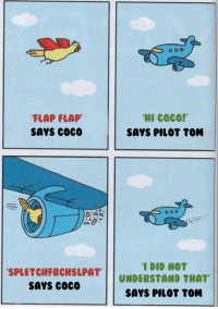 CoCo, Toms, and Irl: FLAP FLAP  SAYS coco  HI COCO!  SAYS PILOT TOM  SPLETCHFRCHSLPAT  SAYS COCo  I DID NOT  UNDERSTAND THAT  SAYS PILOT TOM