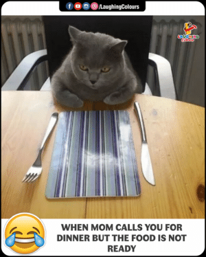 Food, Indianpeoplefacebook, and Mom: fLaughingColours  WHEN MOM CALLS YOU FOR  DINNER BUT THE FOOD IS NOT  READY