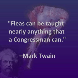 "Congressman: ""Fleas can be taught  nearly anything that  a Congressman can.""  -Mark Twain"