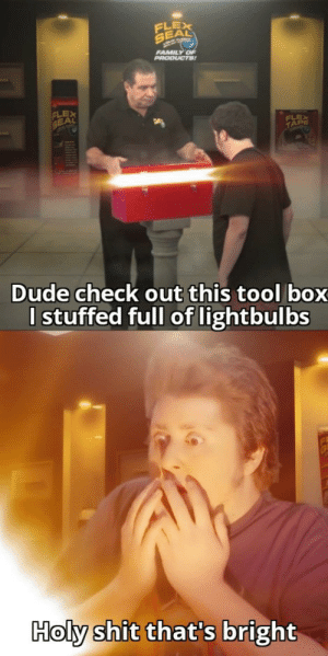 BLINDED BY THE LIGHT!: FLEX  SEAL  FAMILY OF  PRODUCTS!  FLEX  SEAL  FLEX  TAPE  Dude check out this tool box  I stuffed full of lightbulbs  Holy shit that's bright BLINDED BY THE LIGHT!