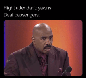 Meirl by PEREL6 MORE MEMES: Flight attendant: yawns  Deaf passengers: Meirl by PEREL6 MORE MEMES