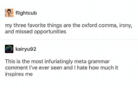 flightculb  my three favorite things are the oxford comma, irony,  and missed opportunities  kairyu92  This is the most infuriatingly meta grammar  comment I've ever seen and I hate how much it  inspires me