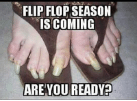 Memes, 🤖, and Ares: FLIP FLOP SEASON  IS COMING  ARE YOU READYP DV6