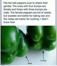 https://t.co/mKPLWDiWu3: Flip the bell peppers over to check their  gender. The ones with four bumps are  female and those with three bumps are  male. The female peppers are full of seeds,  but sweeter and better for eating raw and  the males are better for cooking. Ididn't  know this!  Female  Male https://t.co/mKPLWDiWu3