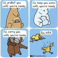 Bitch, Fly, and You: f'll profect you  until you're readuntil you're ready  ILl keep you warm  ILL carry you  until you're ready  fly, bitch  0)  AO THESQUARECOMICS