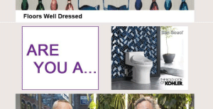 Kohler, Bold, and Ddoi : Floors Well Dressed  San Soucr  ARE  YOU A...  THE BOLD LOOK  KOHLER. Are they asking me if I'm a toilet?