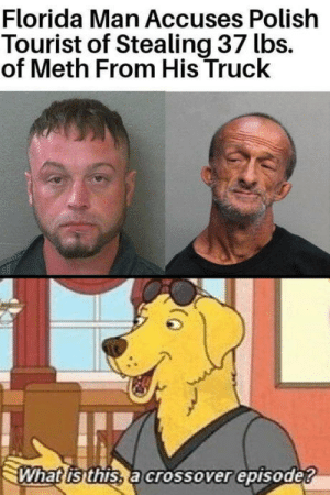 laughoutloud-club:  The most ambitious crossover in history: Florida Man Accuses Polish  Tourist of Stealing 37 lbs.  of Meth From His Truck  What isthis, a crossover episode? laughoutloud-club:  The most ambitious crossover in history