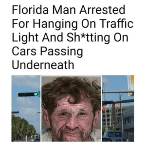 Cars, Florida Man, and Traffic: Florida Man Arrested  For Hanging On Traffic  Light And Sh*tting On  Cars Passing  Underneath The adventures of Florida man