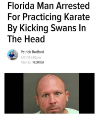 Cats, Dank, and Florida Man: Florida Man Arrested  For Practicing Karate  By Kicking Swans In  The Head  Patrick Redford  5/01/18 7:02pm  Filed to: FLORIDA @Peta how you feel about this? • ➫➫➫ Follow @Staggering for more funny posts daily! • (Ignore: memes dank funny cats insta love me goals happy love twitter)
