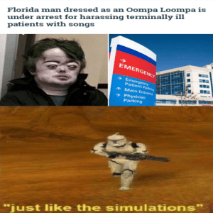"""Florida Man, Movies, and Reddit: Florida man dressed as an Oompa Loompa is  under arrest for harassing terminally ill  patients with songs  EMERGENCY  Emergency  Patient Parking  Main Entrance  Physician  Parking  """"just like the simulations"""" It's just like the movies"""