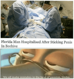 passion: Florida Man Hospitalised After Sticking Penis  In Beehive  We all make  mistakes in the heat of passion, Jimbo.