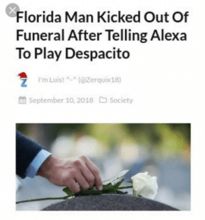 Wait is that real? *Laughs in Elon* by 8-Bit-Oddish MORE MEMES: Florida Man Kicked Out Of  Funeral After Telling Alexa  To Play Despacito  ZI'mLuis!(@Zerquix18)  September 10, 2018 Society Wait is that real? *Laughs in Elon* by 8-Bit-Oddish MORE MEMES