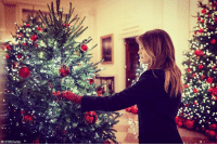 "First Lady Melania Trump tweeted that the White House ""is ready to celebrate Christmas and the holiday season!"" The 2018 theme of the White House holiday decorations is 'American Treasures,' and features patriotic displays highlighting the country's 'unique heritage.': @FLOTUS/Twitter First Lady Melania Trump tweeted that the White House ""is ready to celebrate Christmas and the holiday season!"" The 2018 theme of the White House holiday decorations is 'American Treasures,' and features patriotic displays highlighting the country's 'unique heritage.'"