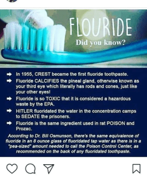 "Facepalm, Tumblr, and Control: FLOURIDE  Did you know?  In 1955, CREST became the first fluoride toothpaste.  Fluoride CALCIFIES the pineal gland, otherwise known as  your third eye which literally has rods and cones, just like  your other eyes!  Fluoride is so TOXIC that it is considered a hazardous  waste by the EPA.  HITLER fluoridated the water in the concentration camps  to SEDATE the prisoners.  Fluoride is the same ingredient used in rat POISON and  Prozac.  →  According to Dr. Bill Osmunson, there's the same equivalence of  fluoride in an 8 ounce glass of fluoridated tap water as there is in a  pea-sized"" amount needed to call the Poison Control Center, as  recommended on the back of any fluoridated toothpaste. memehumor:  I found an old classmates IG and it was chock full of facepalm gold like this."