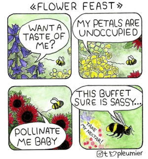 omg-images:  Flower feast [OC]: FLOWER FEAST  WANTAMY PETALS ARE  TASTE OF UNOCCUPIED  ME?  THIS BFFET  SURE IS SASSY.  POLLINATE,  ME BABY  タ  回typleumier omg-images:  Flower feast [OC]