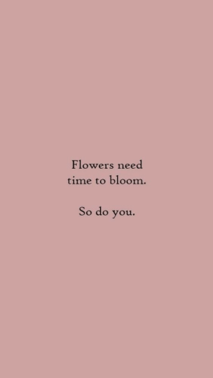 bloom: Flowers need  time to bloom  So do you.