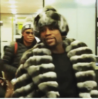 Floyd Mayweather, Mayweather, and Sports: Floyd Mayweather chillin' in Russia wearing half the world's chinchillas 😳 (via @tina_kandelaki)