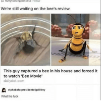 Bee Movie, Memes, and 🤖: fluffy fucking princess Folkow  We're still waiting on the bee's review.  This guy captured a bee in his house and forced it  to watch 'Bee Movie'  daily dot.com  elphabaforpresidentofgallifrey  What the fuck { funnytumblr textposts funnytextpost tumblr funnytumblrpost tumblrfunny followme tumblrfunny textpost tumblrpost haha}